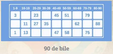bingo bet verificare bilet