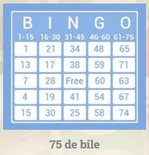 bingo polonia