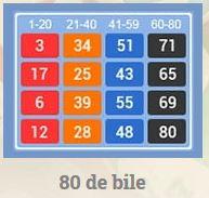 pariuri sportive bingo bet