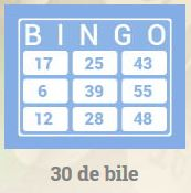 bingo online romania